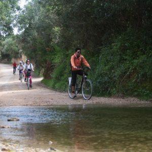 Abilio Bikes Shop & Rentals